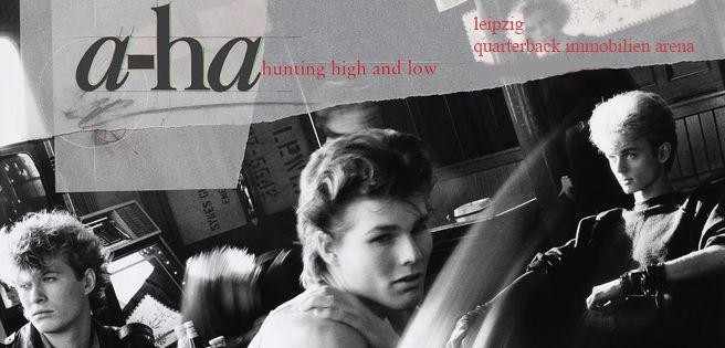200806 a-ha Deluxe Banner Desktop