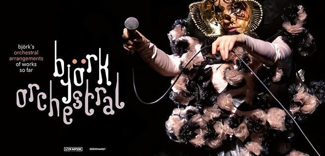 200806 Björk Deluxe Banner Desktop