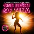 "Essen: ""One Night of Tina"" in der Philharmonie"