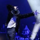 Michael Jackson Memory Tour