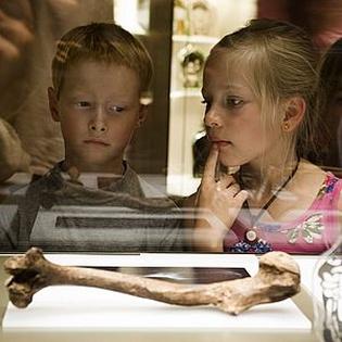 Archäologisches Landesmuseum Brandenburg