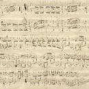 Chopin und die Polen seiner Zeit