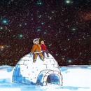Sterne überm Winterwald
