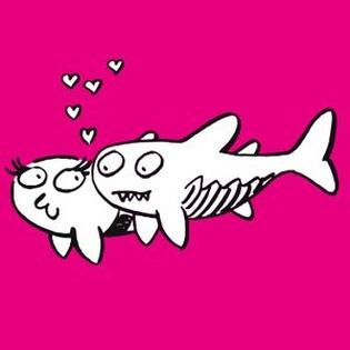 Fisch sucht Fahrrad - Wir verlieben Dich