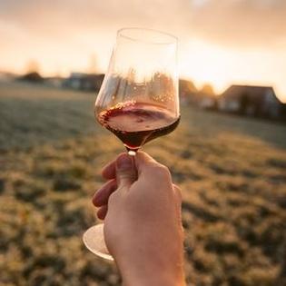 WeinMünster