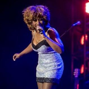 Die Tina Turner Story
