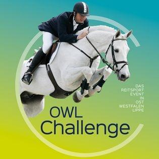 OWL CHALLENGE 2019
