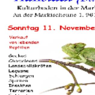 Reptilienbörse Giessen