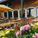 Blumenzwiebel-Markt