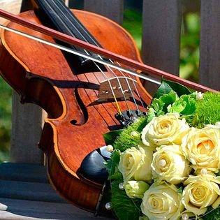 Vivaldi plus….