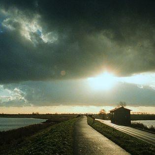 Hollands Licht (OmU)
