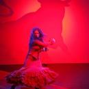 Carmen – Eine Flamencoerzählung
