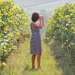 alkoholfrei Traubensaft/Weinprobe unverfroren - unvergoren