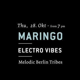 Electro Vibes mit Maringo