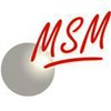 MSM - Musik Show Management