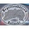 Reptilienbörse Rolinski