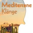 Mediterrane Klänge - Sommerkonzert der Erlanger Kammerorchester
