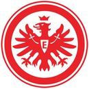 SV Wehen Wiesbaden - Eintracht Frankfurt
