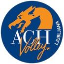 VfB Friedrichshafen - ACH Volley Ljubljana