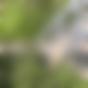 Baumwipfelpfad Harz